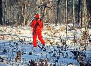woman deer hunter